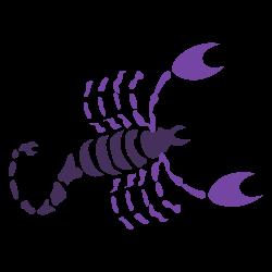 scorpio rashi